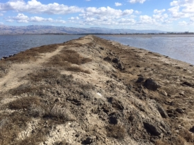 Levee at Alviso