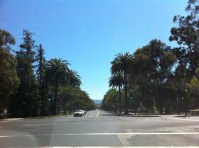 Palm Drive, Palo Alto