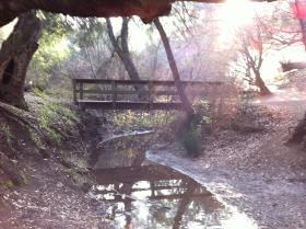 Foot bridge Rancho San Antonio, CA